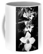 Yosemite Dogwoods Black And White Coffee Mug