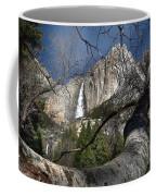 Yosemite Falls Tree Coffee Mug