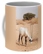 Yotvata Hai-bar Reserve Coffee Mug
