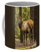 Young Bull Elk Coffee Mug