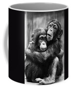 Young Chimpanzees Coffee Mug