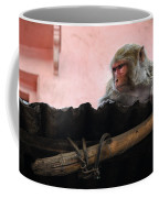 Young Female Asian Monkey Sitting On The Roof Coffee Mug