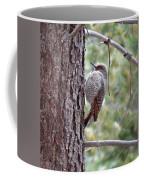 Young Flicker Coffee Mug