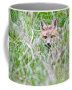 Young Fox Kit Hiding In Tall Grass Coffee Mug