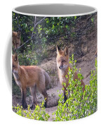 Young Foxes At The Den Coffee Mug