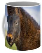 Young Icelandic Horse Coffee Mug