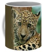 Young Jaguar Coffee Mug