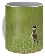 Young Killdeer In Grass Coffee Mug