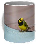 Young Male Hooded Warbler 2 Coffee Mug