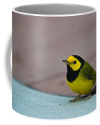 Young Male Hooded Warbler 3 Coffee Mug