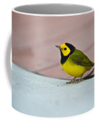 Young Male Hooded Warbler 4 Coffee Mug