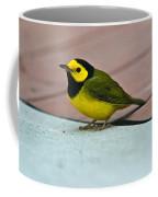 Young Male Hooded Warbler 5 Coffee Mug