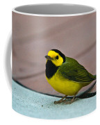 Young Male Hooded Warbler 6 Coffee Mug