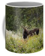 Young Male Moose Coffee Mug