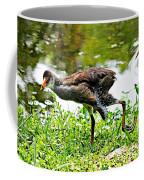 Young Moorhen Coffee Mug