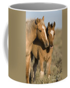 Young Mustangs Playing Coffee Mug