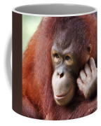 Young Orang Utan Looking Thoughtful Coffee Mug