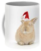 Young Sandy Rabbit Wearing A Christmas Coffee Mug
