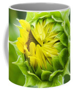 Young Sunflower Coffee Mug