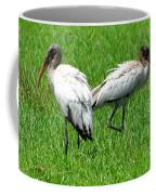 Young Wood Storks 2 Coffee Mug