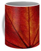 You're So Vein Coffee Mug