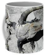 Yucatan Lizard Coffee Mug