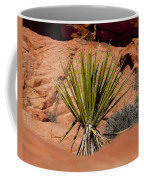 Yucca Beauty Coffee Mug