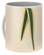 Yucca Leaf Coffee Mug