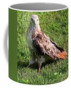 Yup Here I Am Take A Good Look Coffee Mug