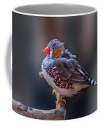 Zebra Finch Coffee Mug