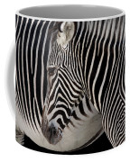 Zebra Head Coffee Mug by Carlos Caetano