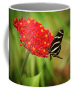 Zebra Long Wing Butterfly Coffee Mug
