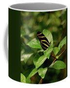 Zebra Longwing Butterfly Coffee Mug