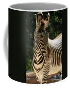 Zebra Portrait Coffee Mug