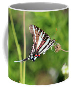 Zebra Swallowtail Butterfly In Garden 2016 Coffee Mug