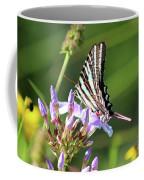 Zebra Swallowtail Butterfly On Phlox Coffee Mug