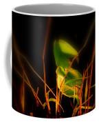 Zen Photography - Sunset Rays Coffee Mug