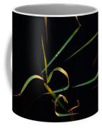 Zen Photography Coffee Mug