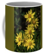 Zexmenia Coffee Mug