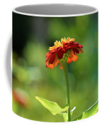 Zinnia Flower Coffee Mug