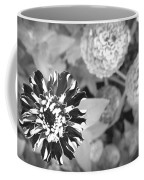 Zinnia In Black And White  Coffee Mug