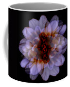 Zinnia On Black Coffee Mug