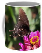 Zinnia Visitor 4 Coffee Mug