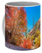 Zion Autumn Colors Coffee Mug