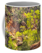 Zion National Park Small Tributary Of The Virgin River Coffee Mug