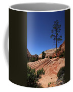 Zion Park Colors And Texture Coffee Mug