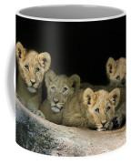 Four Cubs Coffee Mug