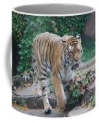Chicago Zoo Tiger Coffee Mug