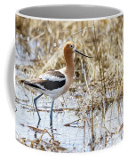 American Avocet Coffee Mug by Michael Chatt
