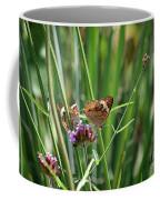 Buckeye Butterflies Coffee Mug
